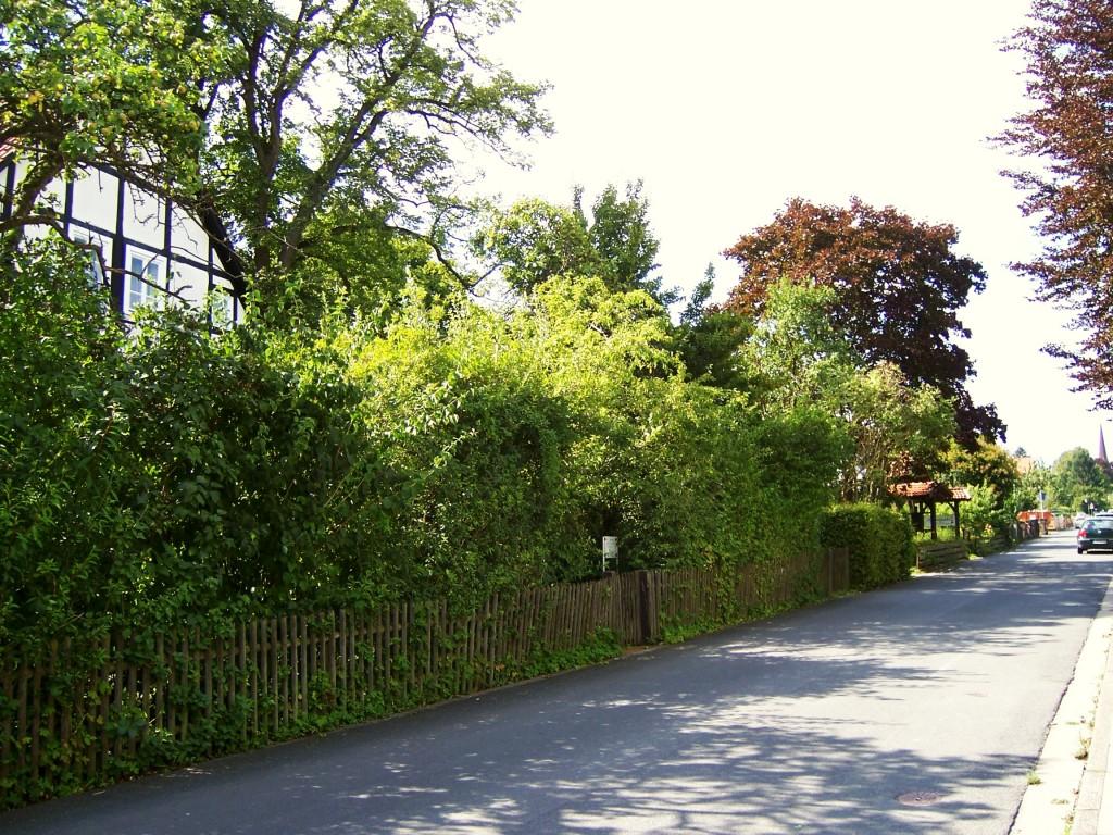 Hagen, Straße